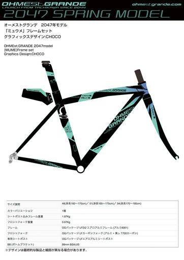 2047model_sample_frameset_.jpg